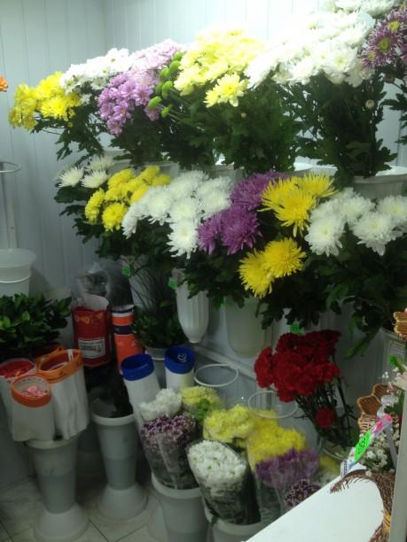 Цветы6
